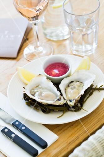 Fresh oysters in a restaurant (Cornwall, England)