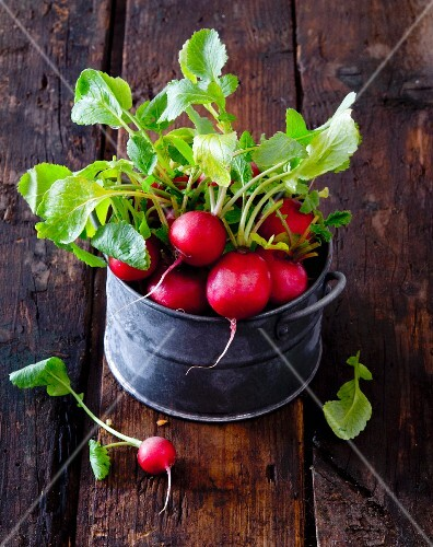 Radishes in a metal bucket