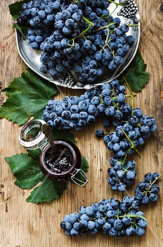 Blue grape jelly and fresh grapes