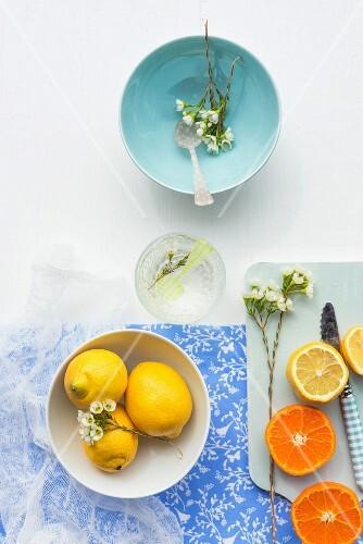 An arrangement of lemons and tangerines