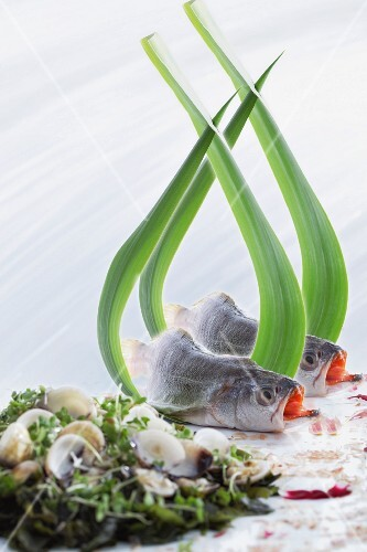 An arrangement of black fish and mussels