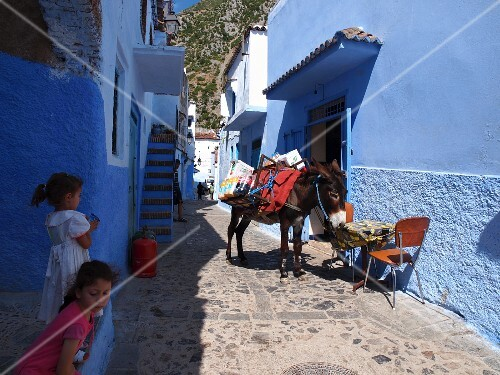 Pack donkey and two little girls in one of the blue alleys in the Medina of Chefchaouen, Morocco