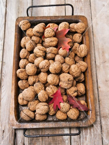 Walnuts with autumnal leaves on a wooden tray