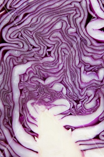 Red cabbage (detail)