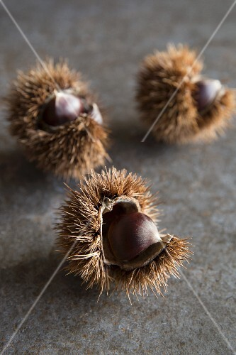 Three sweet chestnuts