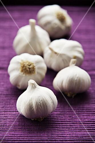 Garlic bulbs on a purple surface