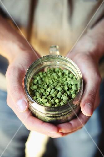 Hallertau hops pellets (Franken, Germany)