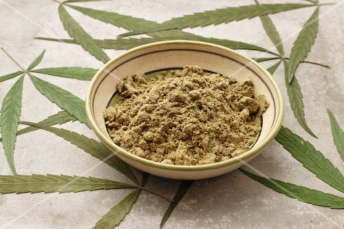 A bowl of protein-rich hemp seed powder