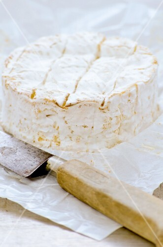 Camembert from France