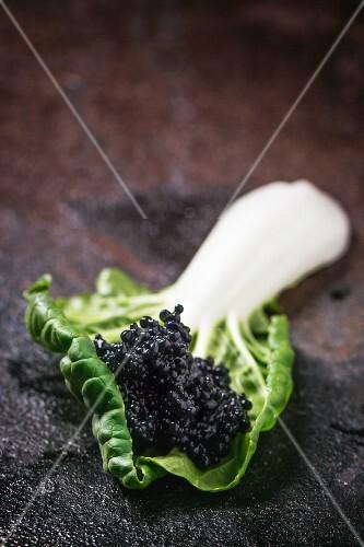 Black caviar on a chard leaf