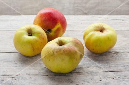 Four organic Rheinischer Winterrambur apples on a wooden surface