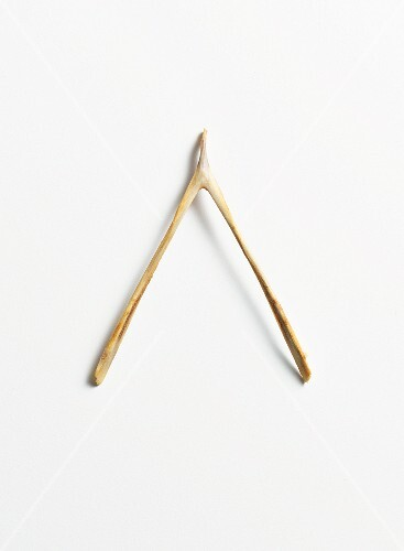 A wishbone from poultry bird