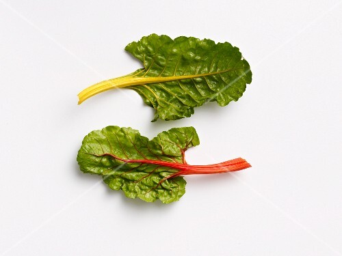 A red chard leaf and a yellow chard leaf
