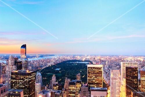 The skyline of Manhattan with Central Park (New York, USA)