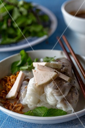 Pork filled noodle rolls with fried shallots (Vientiane, Laos)