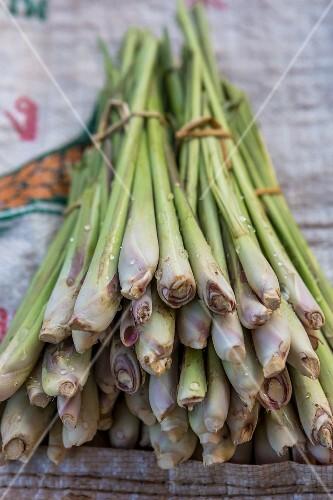 Bundles of lemongrass (Vientiane, Laos)