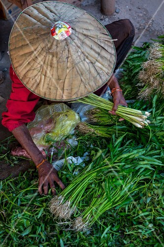 Water spinach and lemongrass at a market (Vientiane, Laos)