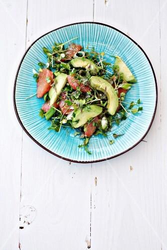 Avocado, grapefruit, cress and spring onion salad