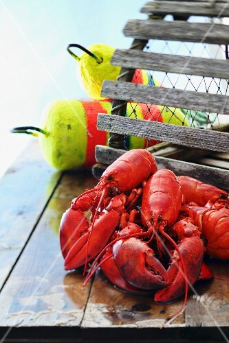 Lobsters on a jetty