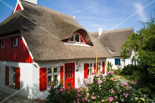 Reetdachhaus mit roter Haustür und roten Fensterläden, Ahrenshoop an ...
