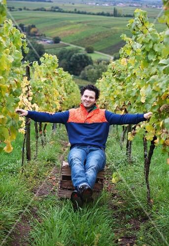 The wine grower Peter Klein sitting between his Riesling vines in Hainfeld (Rhineland Palatinate)