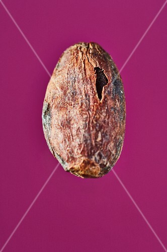 A cocoa bean on a purple surface
