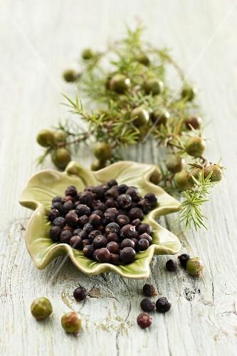 A sprig of juniper berries and dried juniper berries