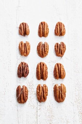 Rows of pecan nuts