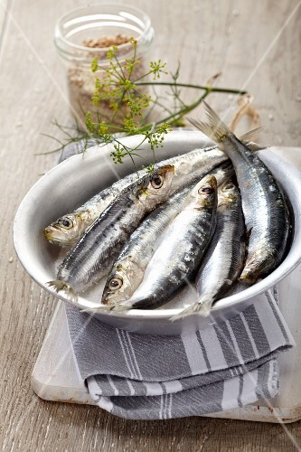 A bowl of fresh sardines