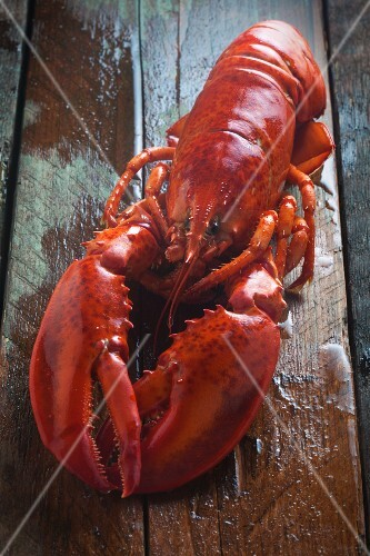 A whole cooked lobster on a wooden surface