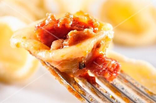 Orecchiette al ragù di carne e salame (pasta with a meat and sausage sauce, Italy)