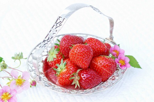 Strawberries and strawberry flowers in a silver dish