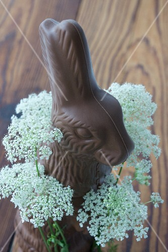 A chocolate bunny with a wreath of chervil