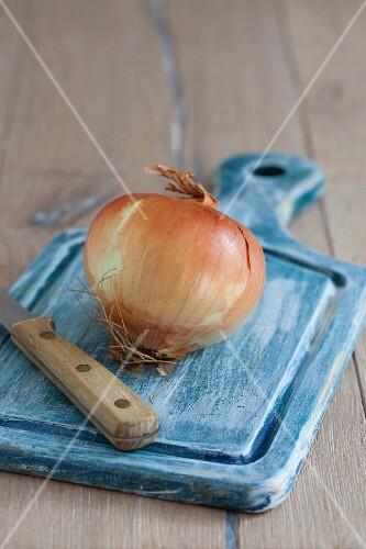 A white onion on a blue chopping board