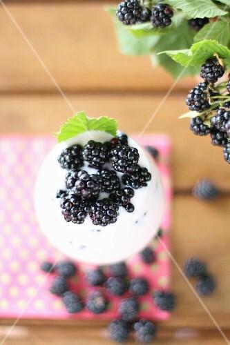 Yogurt with fresh blackberries