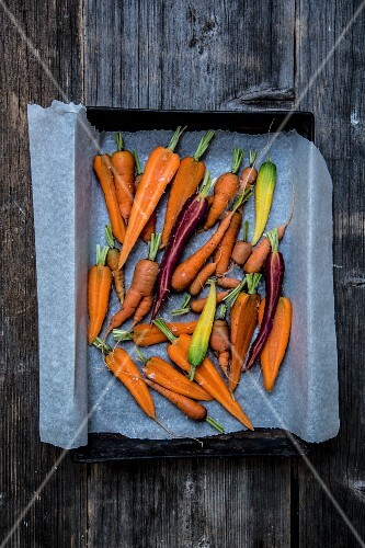 Various carrots on a baking tray
