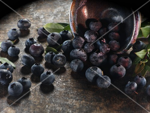 Fresh blueberries falling out of a bowl