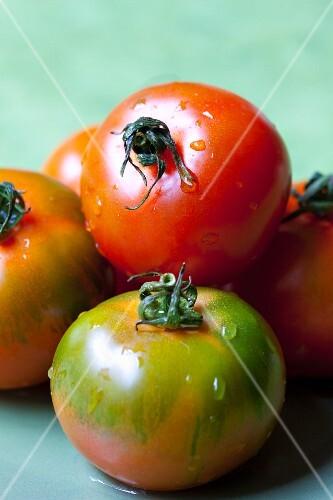Freshly washed Sicilian tomatoes