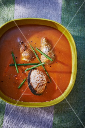 Fish soup with mussels and sea snails