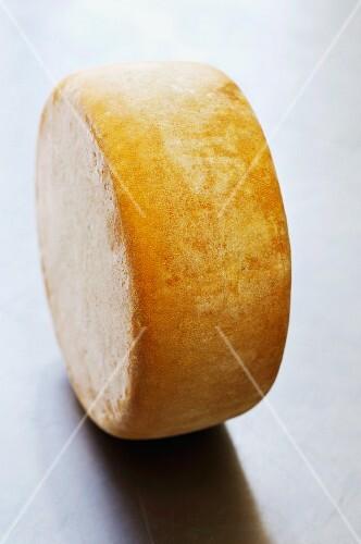 A mature wheel cheese