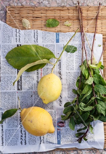 Lemons and fresh mint on a piece of newspaper (seen from above)
