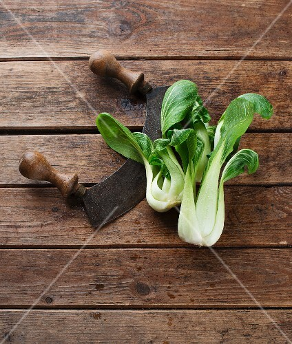 Bok choy with a mezzaluna on a wooden surface