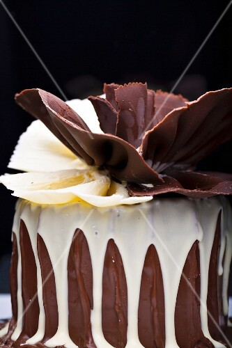 A festive chocolate cake with a chocolate fan