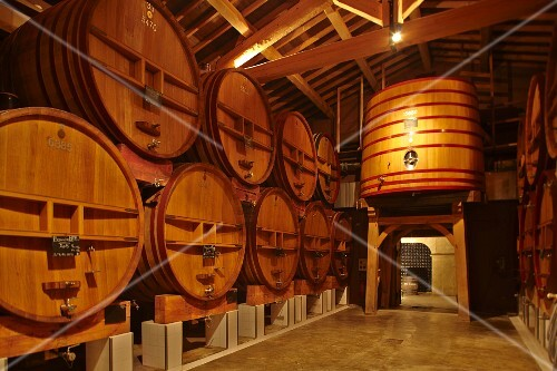 The wine cellar at the Beaucastel vineyard in the Appellation Chateauneuf-du-Pape, France