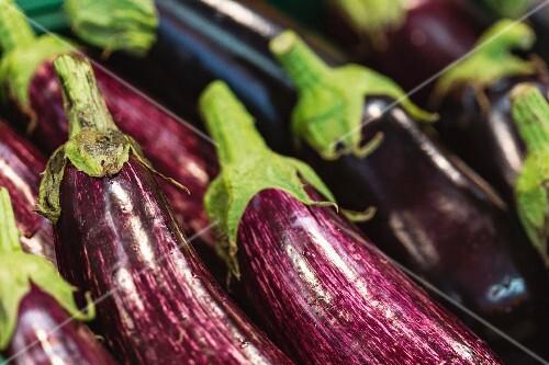 Various aubergines (close-up)