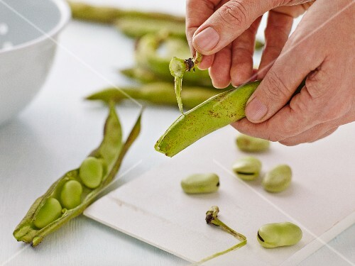Broad beans being shelled