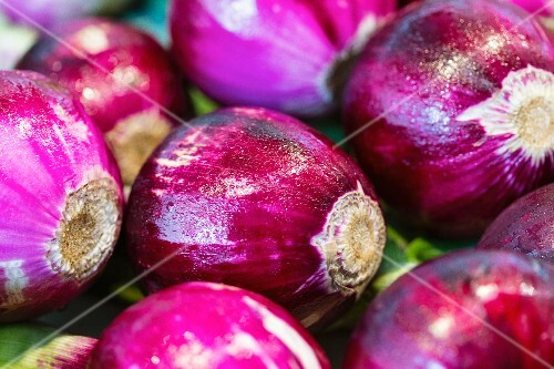 Fresh red onions (close-up)