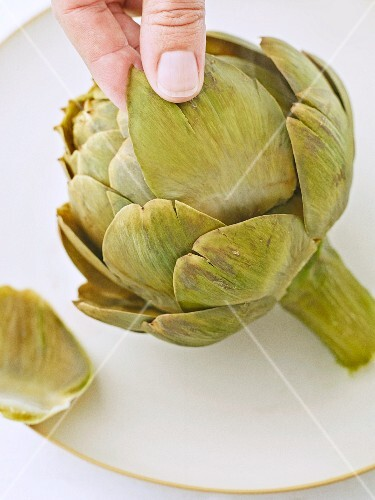 Artichoke leaves being removed (testing to see if cooked through)