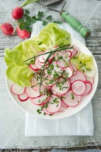 Radish salad with chives