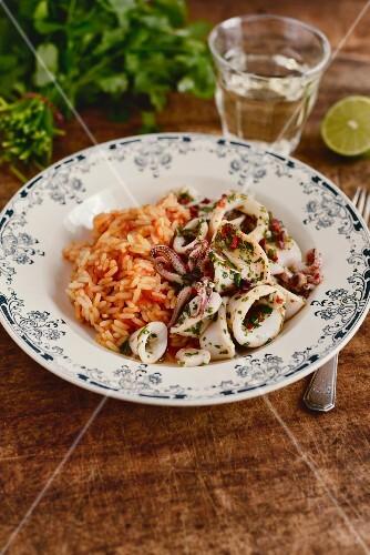 French herb calamari with tomato rice